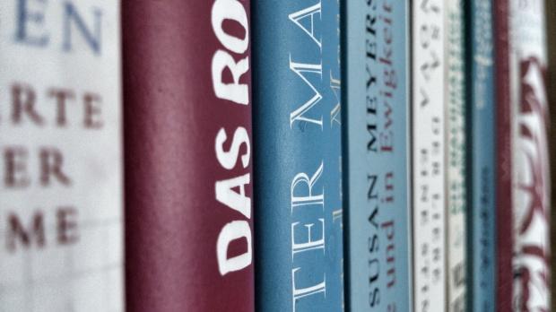 Bücherregal 1